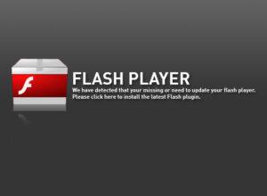 flashplayer1