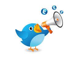 Twiting Bird