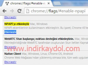 Google Chrome nPapi Etkinleştirme