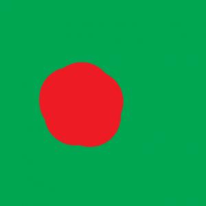 bangladesh - Bangladeş Bayrağı Skin Agar.io