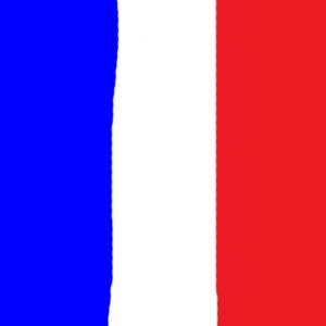 france - Fransa Bayrağı Skin Agar.io