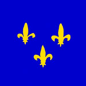 french kingdom - Fransa İmparatorluğu Bayrağı Skin Agar.io
