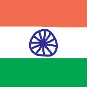 india - Hindistan Bayrağı Skin Agar.io