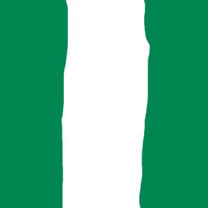 nigeria - Nijerya Bayrağı Skin Agar.io