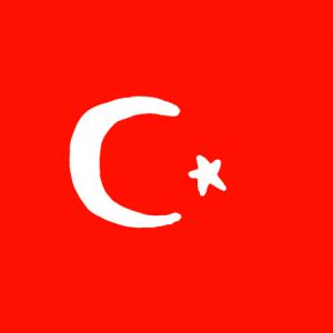 turkey - Türk Bayrağı Türkiye Bayrağı Skin Agar.io