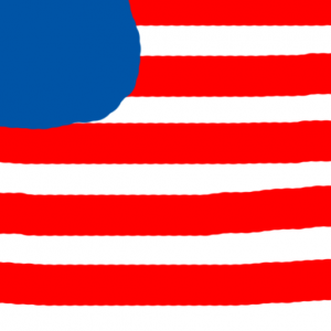 usa - Amerikan Bayrağı Skin Agar.io